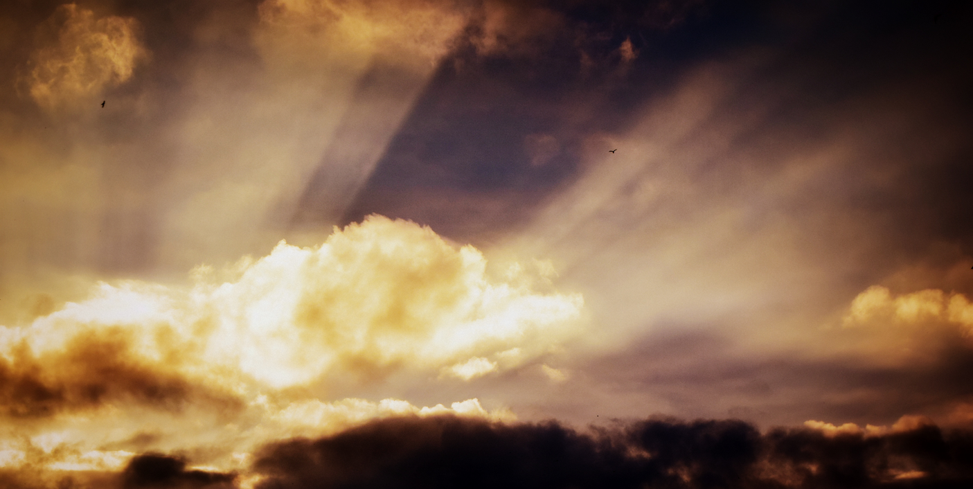 Cloud Services: A Positive Shift Across The Industry